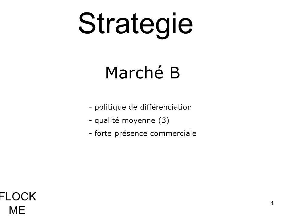Strategie Marché B FLOCK ME - politique de différenciation