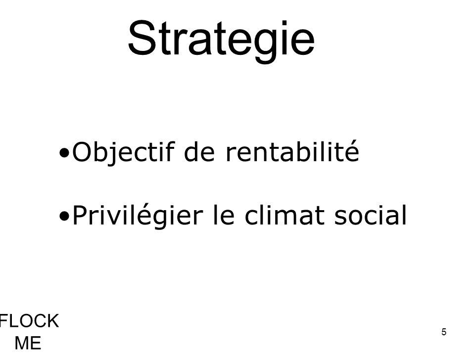 Strategie Objectif de rentabilité Privilégier le climat social