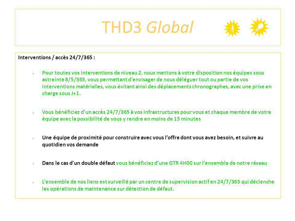 THD3 Global Interventions / accès 24/7/365 :