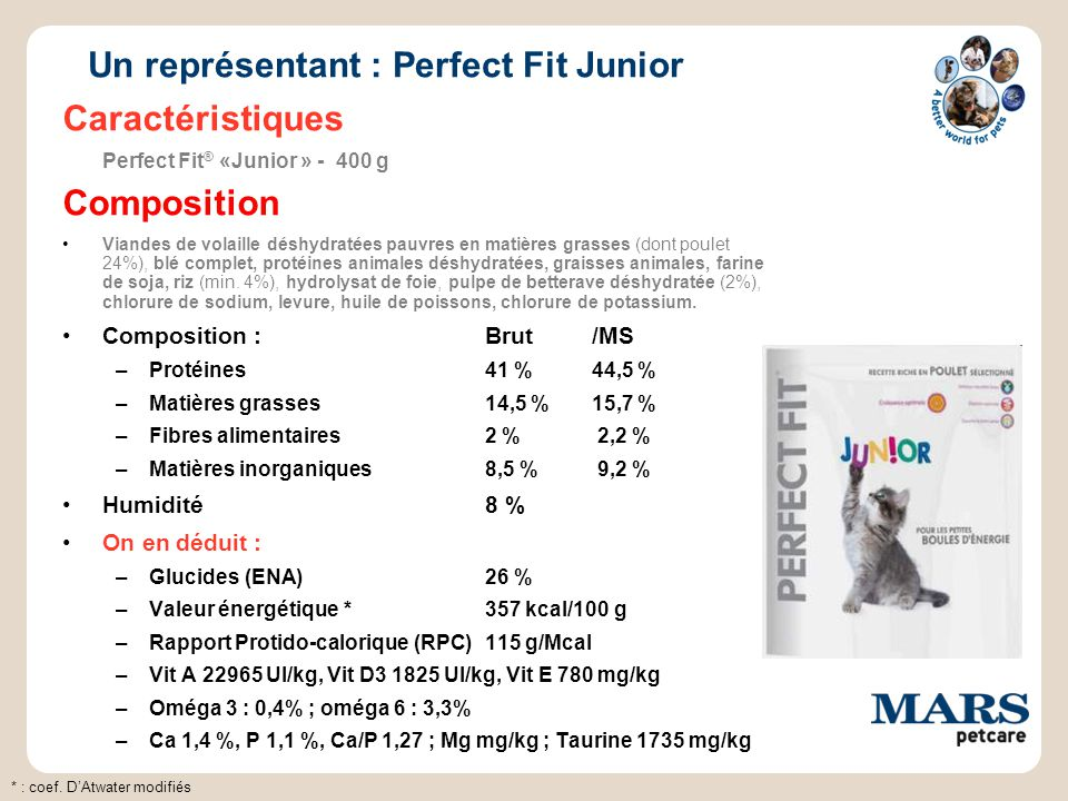 Un représentant : Perfect Fit Junior