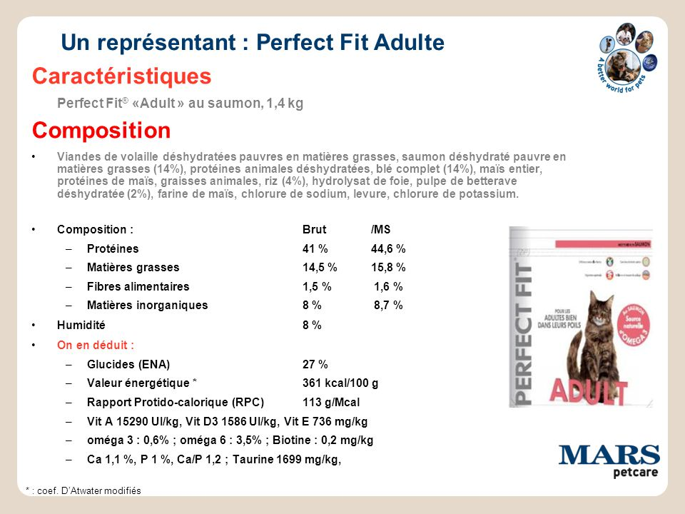 Un représentant : Perfect Fit Adulte