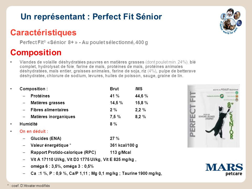 Un représentant : Perfect Fit Sénior