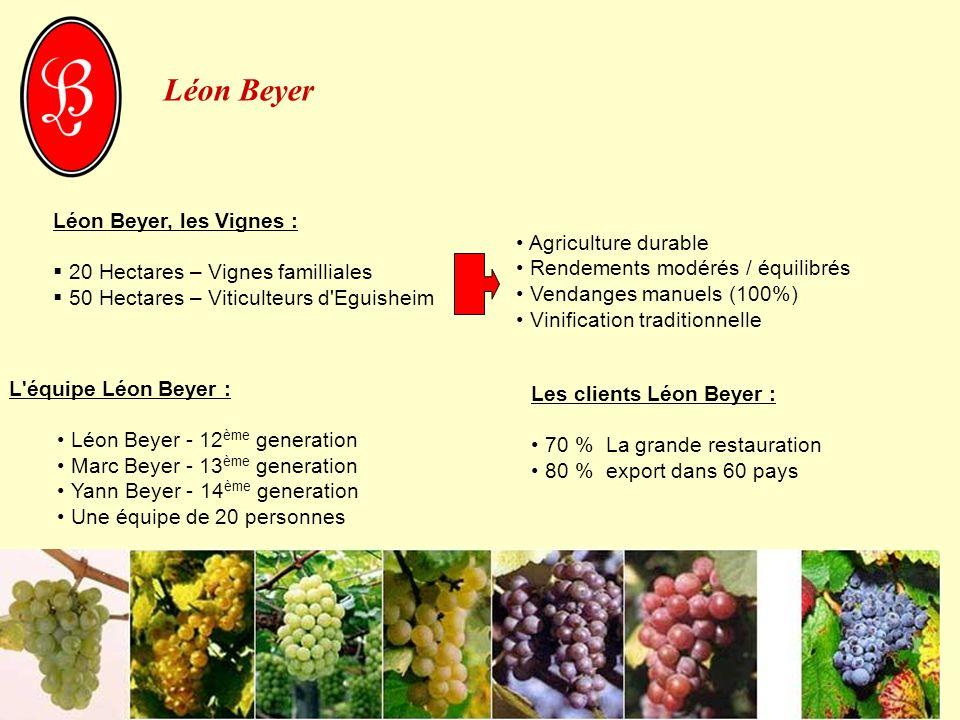 Léon Beyer Léon Beyer, les Vignes : Agriculture durable