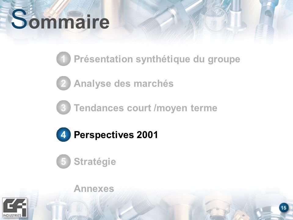 Sommaire Présentation synthétique du groupe 1 Stratégie 5 Annexes