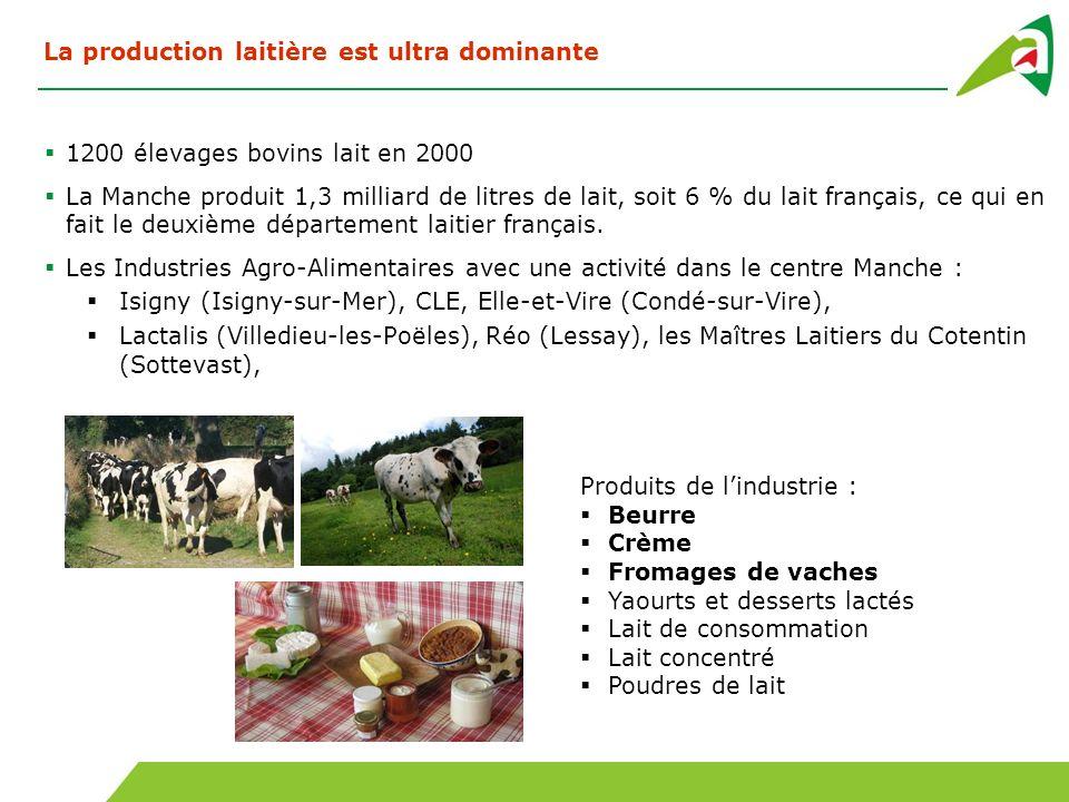 La production laitière est ultra dominante