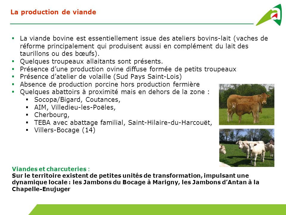 La production de viande