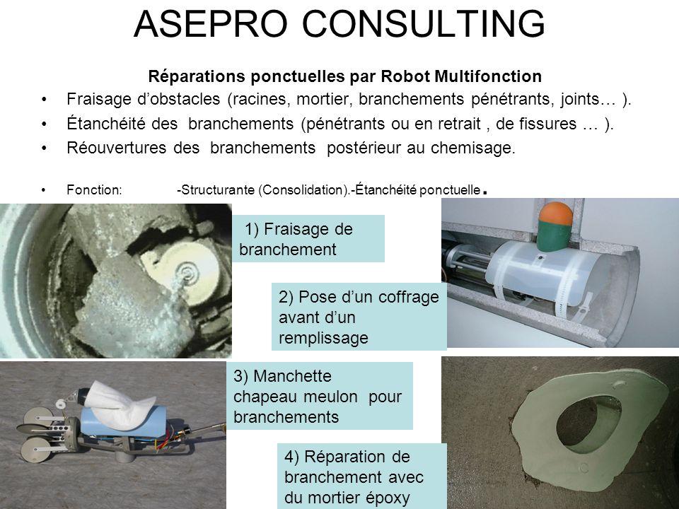 ASEPRO CONSULTING Réparations ponctuelles par Robot Multifonction