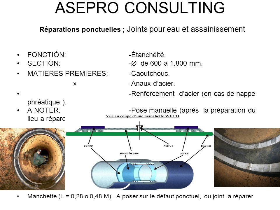 ASEPRO CONSULTING Réparations ponctuelles ; Joints pour eau et assainissement