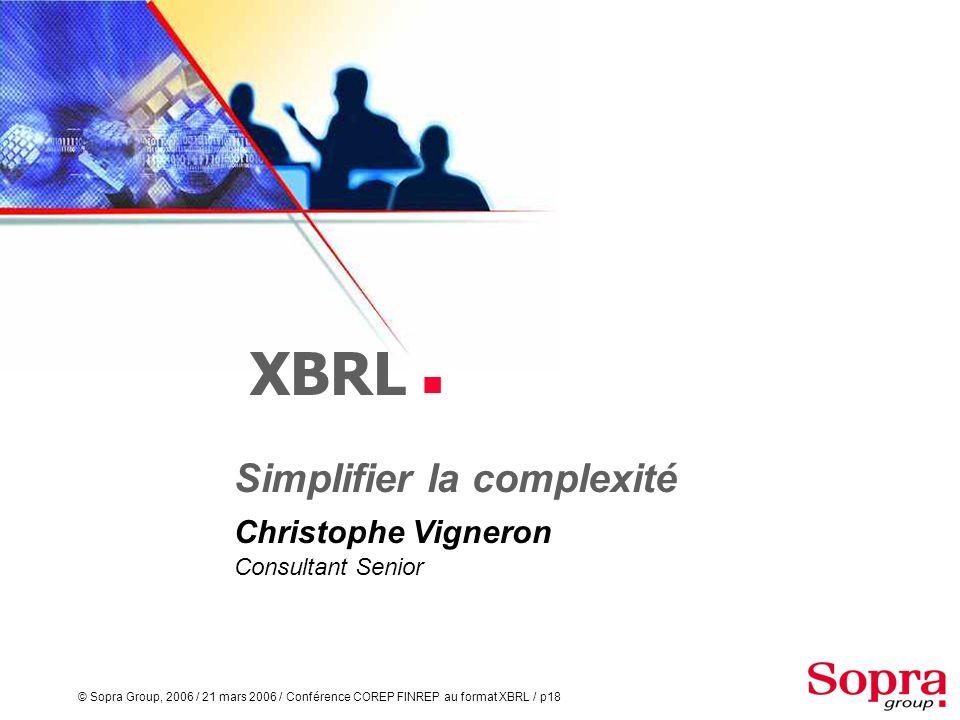 Simplifier la complexité Christophe Vigneron Consultant Senior