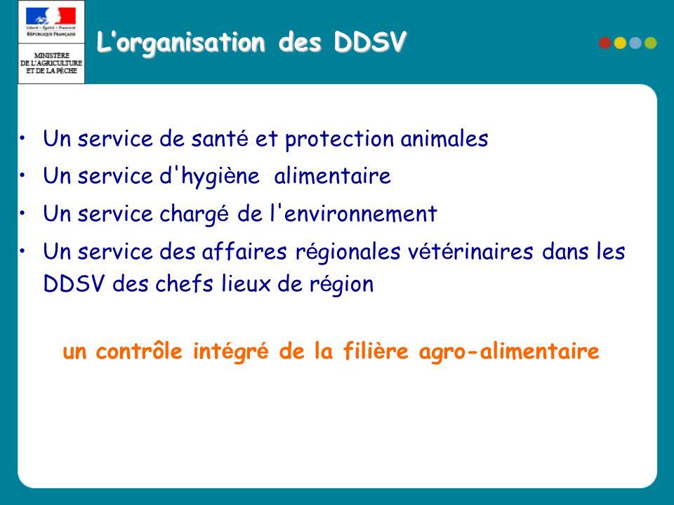 L'organisation des DDSV