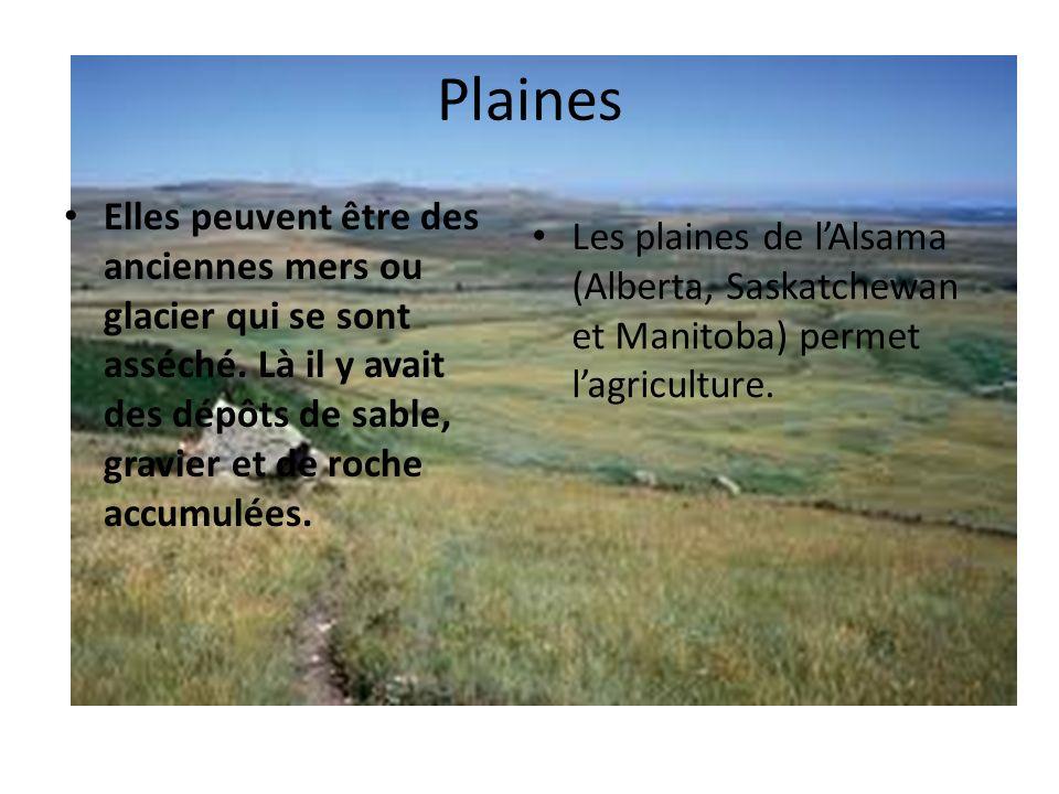 Plaines Elles peuvent être des anciennes mers ou glacier qui se sont asséché. Là il y avait des dépôts de sable, gravier et de roche accumulées.