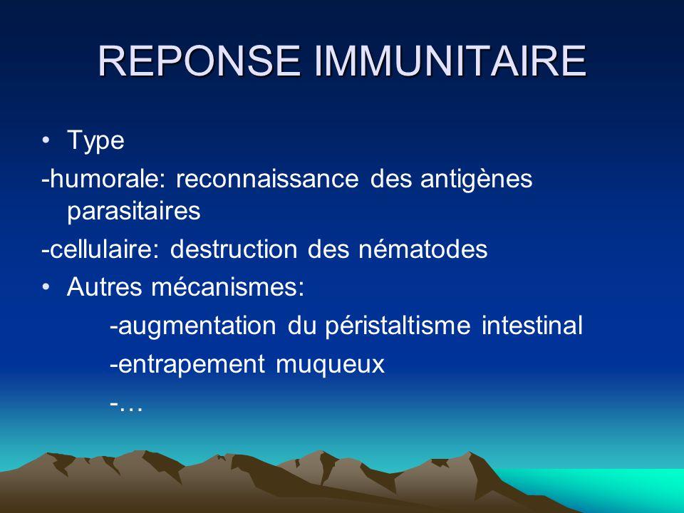 REPONSE IMMUNITAIRE Type