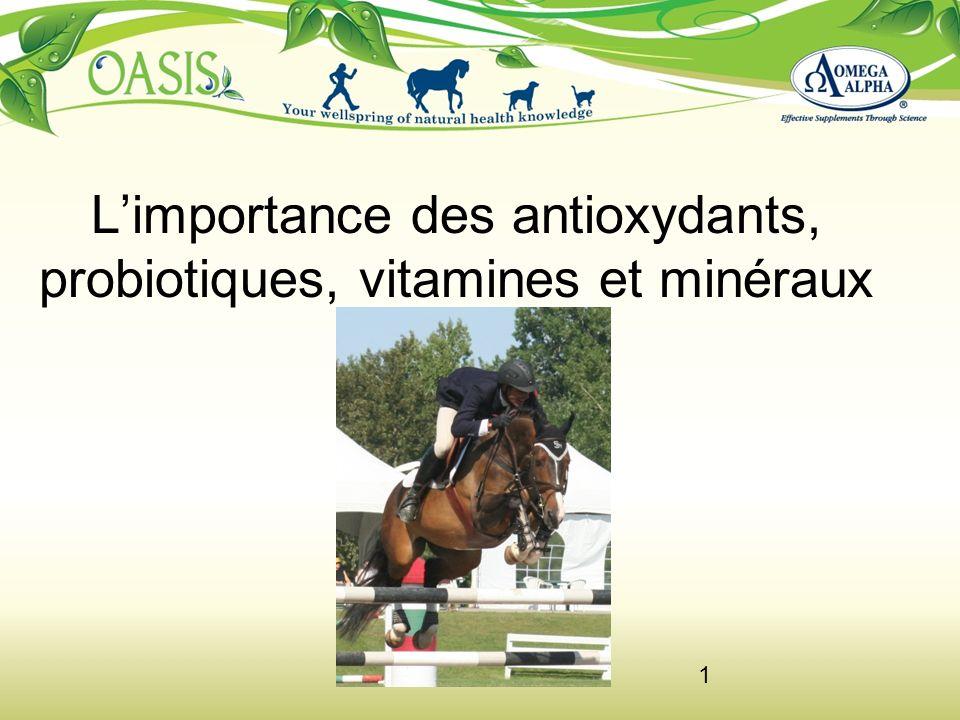 L'importance des antioxydants, probiotiques, vitamines et minéraux