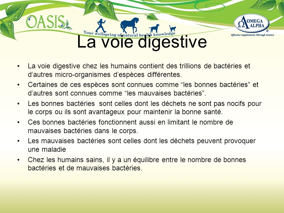 La voie digestive La voie digestive chez les humains contient des trillions de bactéries et d'autres micro-organismes d'espèces différentes.
