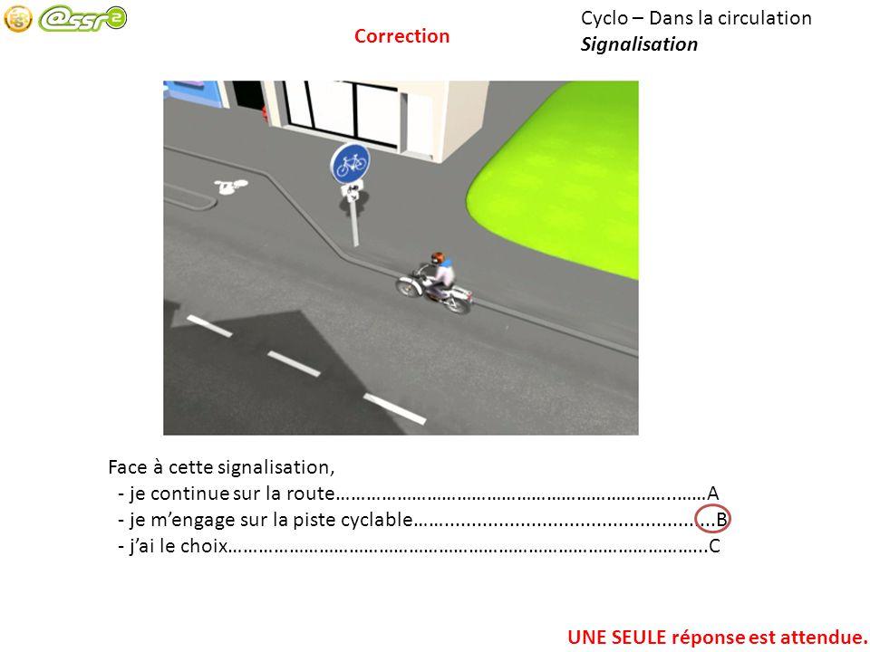 Cyclo – Dans la circulation