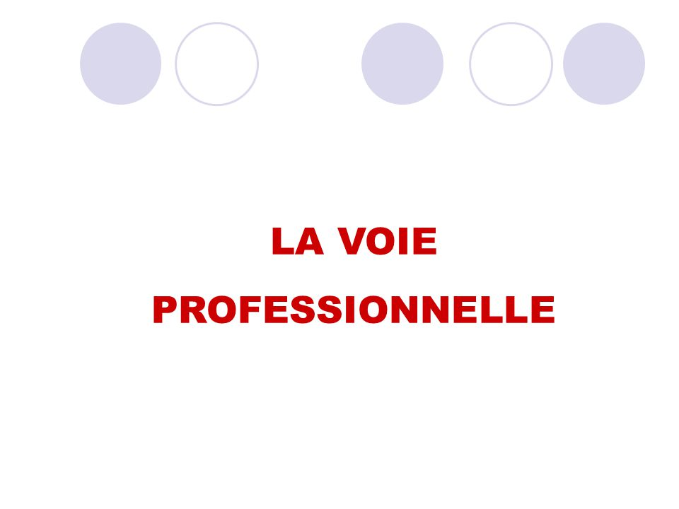 LA VOIE PROFESSIONNELLE 30