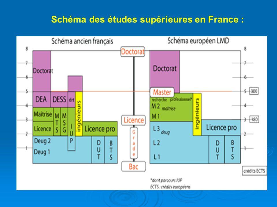 Schéma des études supérieures en France :