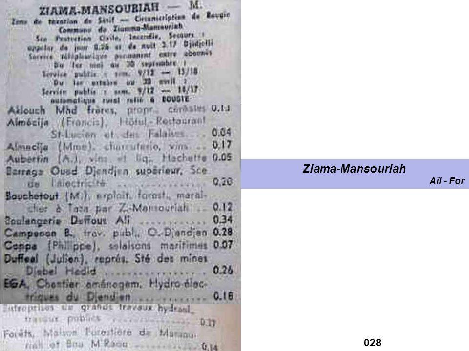 Ziama-Mansouriah Aîl - For 028