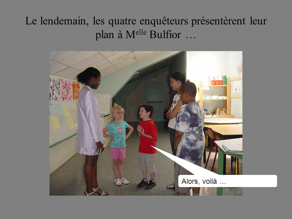 Le lendemain, les quatre enquêteurs présentèrent leur plan à Melle Bulfior …