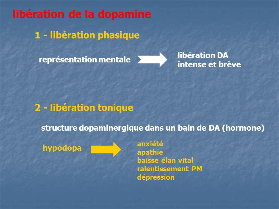 libération de la dopamine