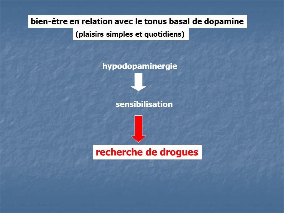 bien-être en relation avec le tonus basal de dopamine