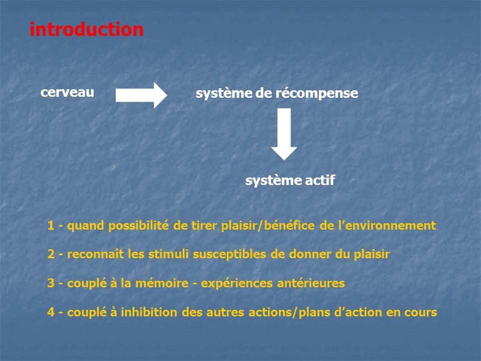 introduction cerveau système de récompense système actif