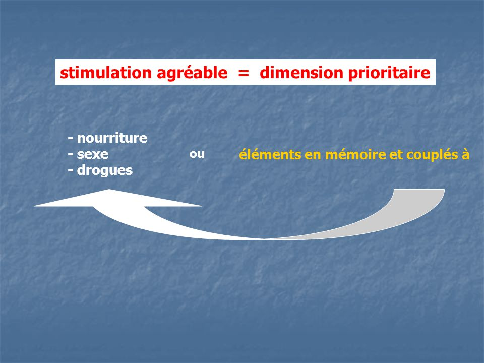 stimulation agréable = dimension prioritaire