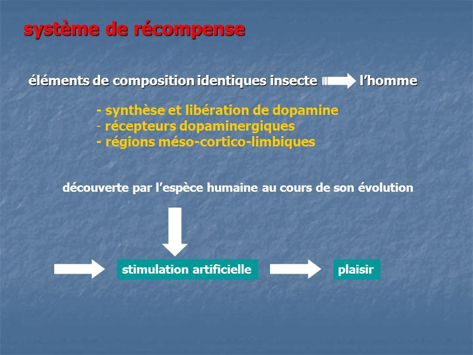 système de récompense éléments de composition identiques insecte l'homme. - synthèse et libération de dopamine.
