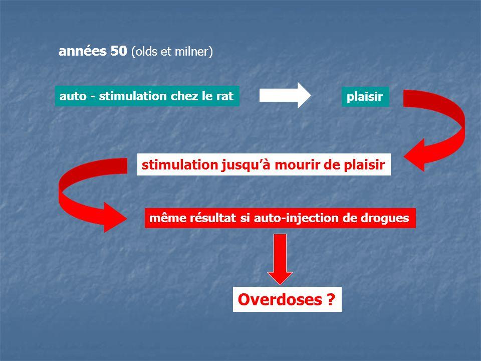 Overdoses années 50 (olds et milner)