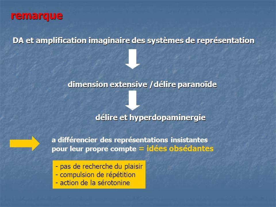 remarque DA et amplification imaginaire des systèmes de représentation