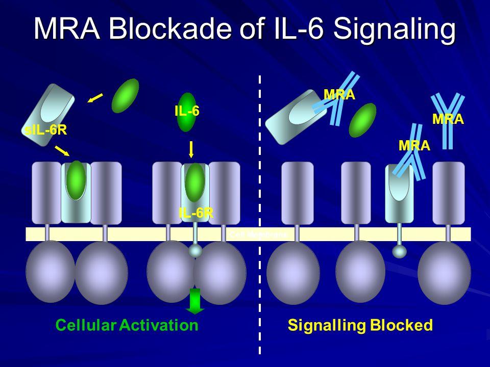 MRA Blockade of IL-6 Signaling