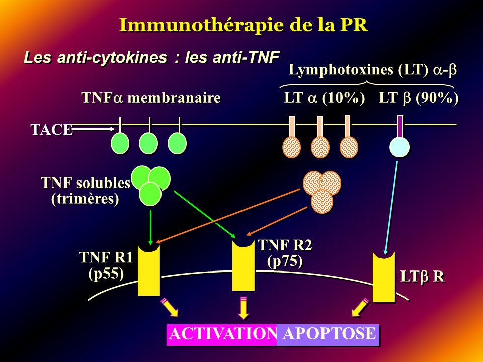 Immunothérapie de la PR