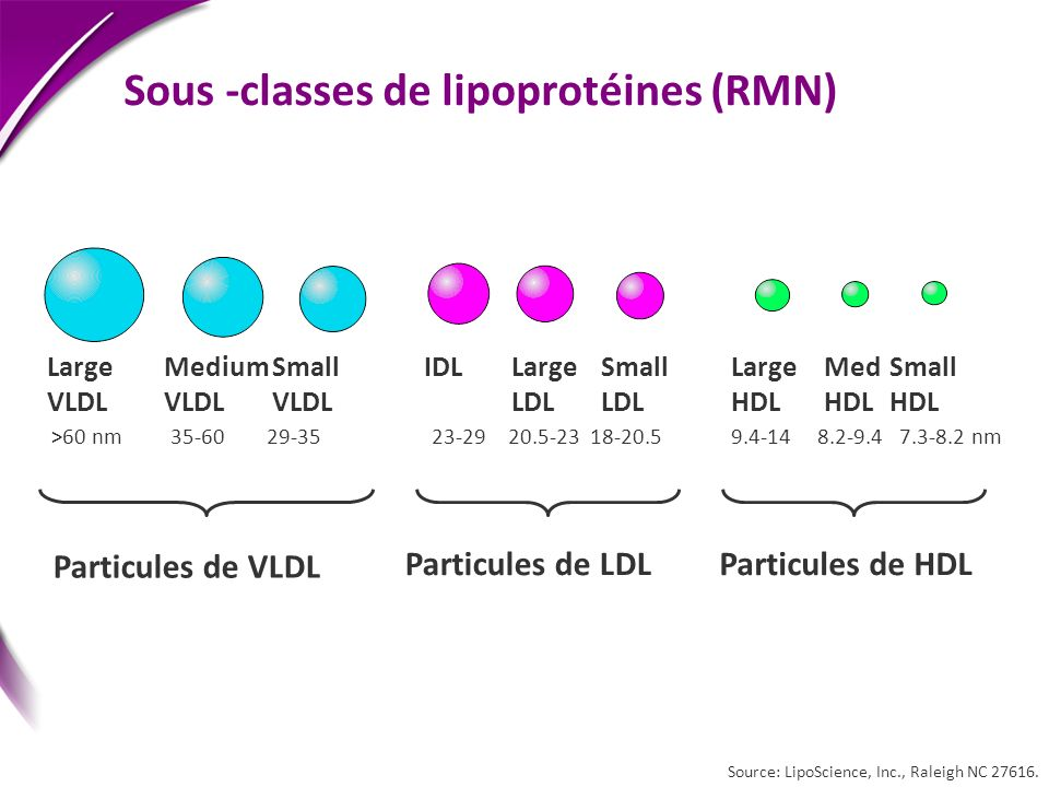Sous -classes de lipoprotéines (RMN)
