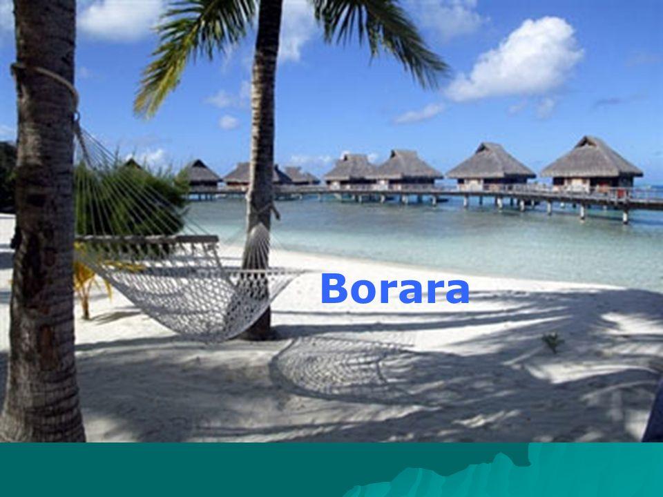 Borara