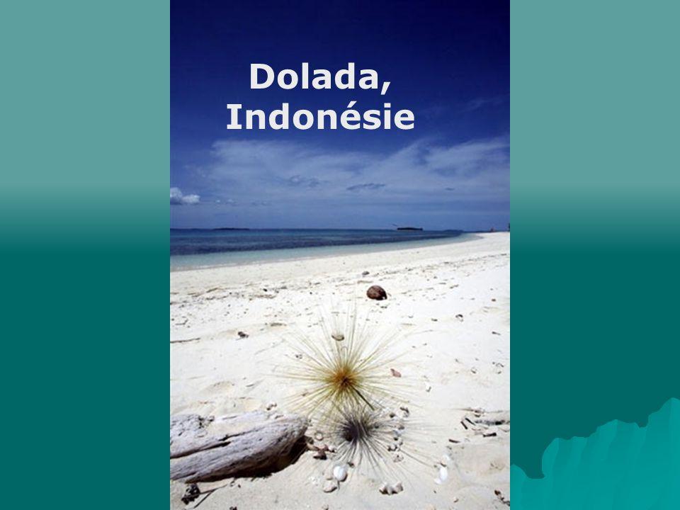 Dolada, Indonésie