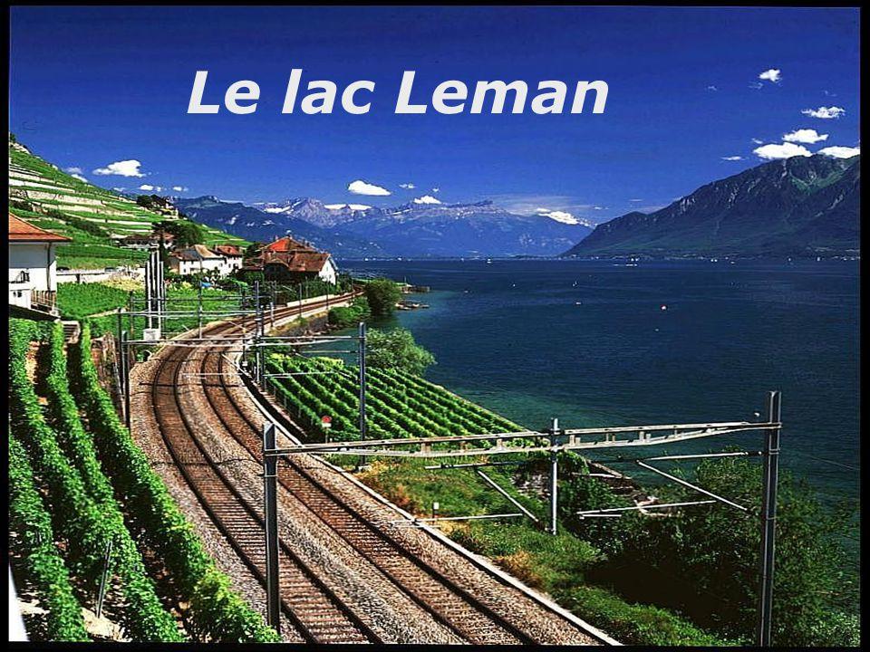 Le lac Leman