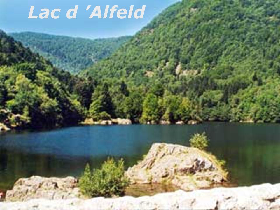 Lac d 'Alfeld