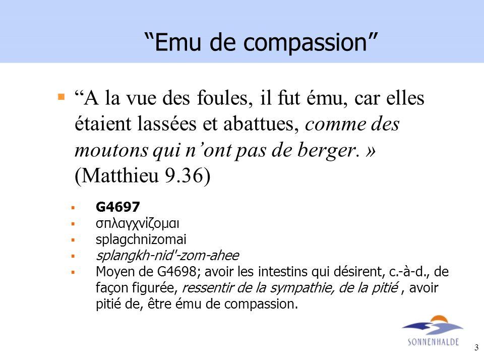 Emu de compassion