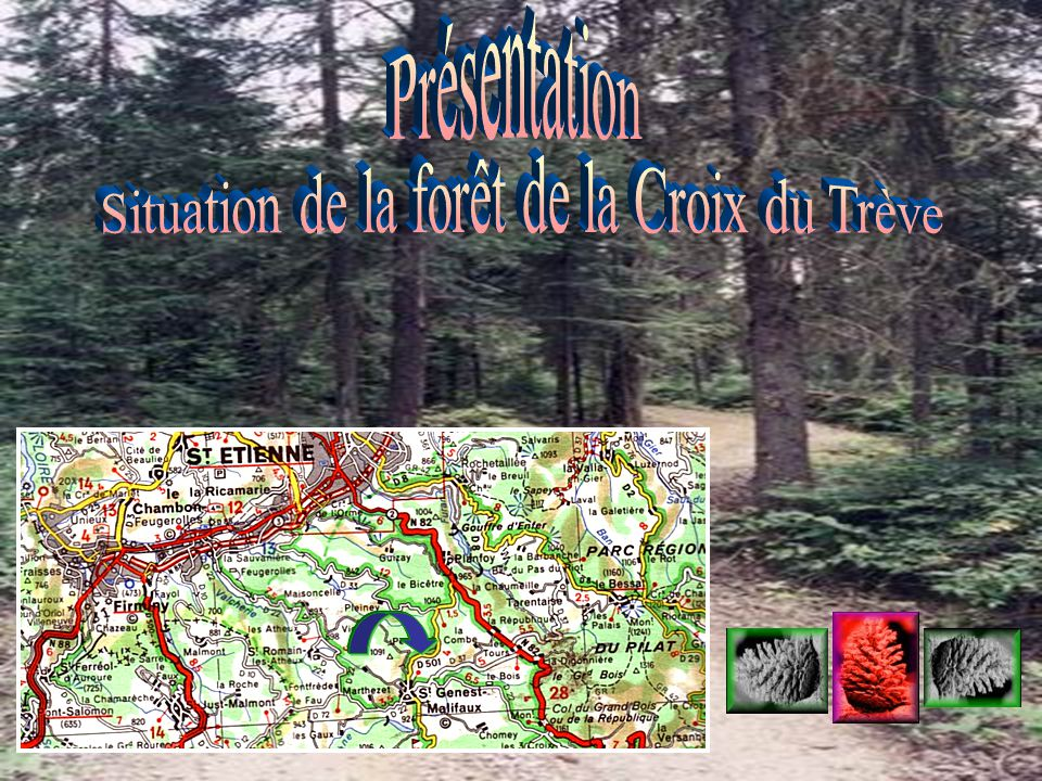 Situation de la forêt de la Croix du Trève