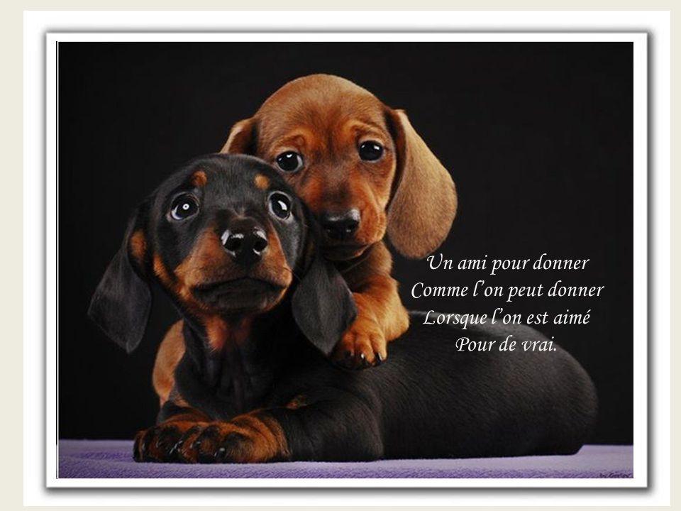 Un ami pour donner Comme l'on peut donner Lorsque l'on est aimé Pour de vrai.