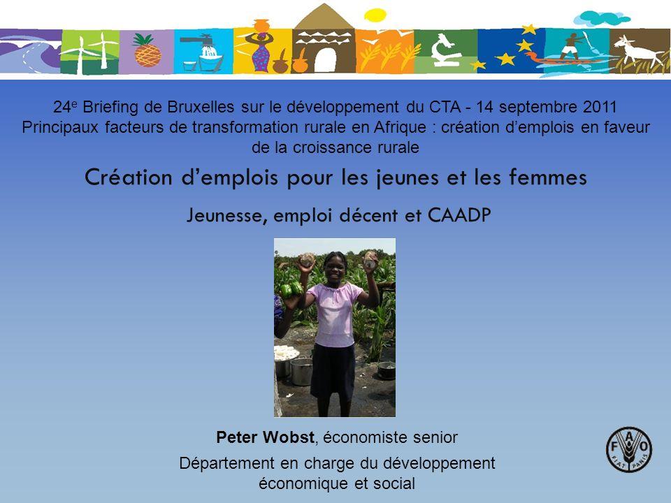 24e Briefing de Bruxelles sur le développement du CTA - 14 septembre 2011