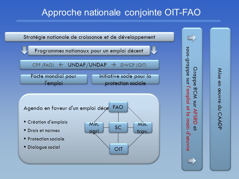 Approche nationale conjointe OIT-FAO