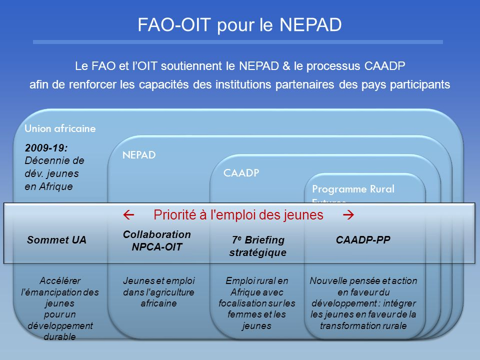 Collaboration NPCA-OIT 7e Briefing stratégique