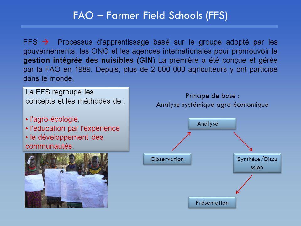 FAO – Farmer Field Schools (FFS)