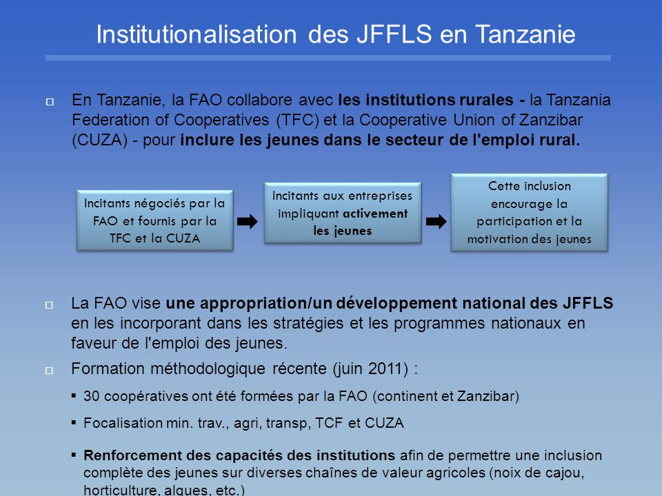 Institutionalisation des JFFLS en Tanzanie