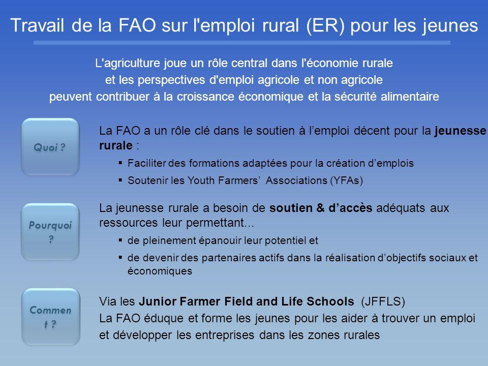 Travail de la FAO sur l emploi rural (ER) pour les jeunes
