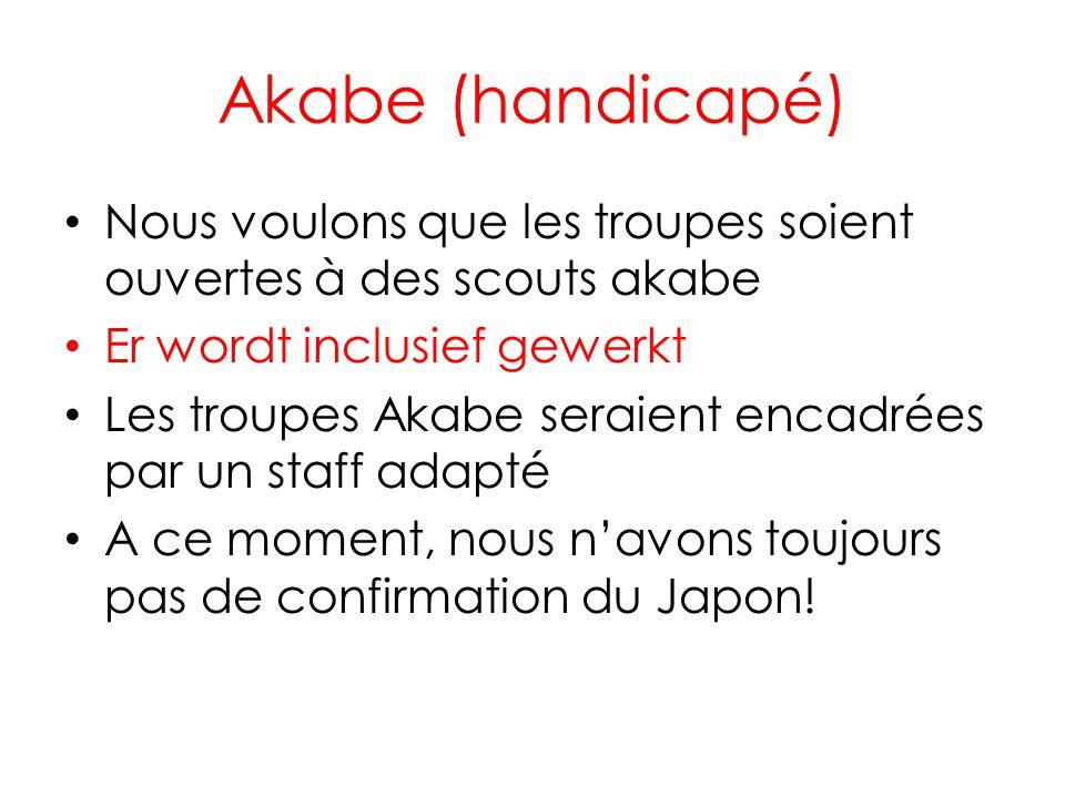 Akabe (handicapé) Nous voulons que les troupes soient ouvertes à des scouts akabe. Er wordt inclusief gewerkt.