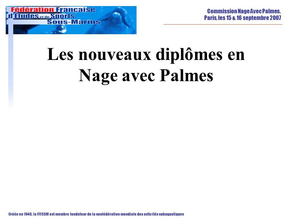 Les nouveaux diplômes en Nage avec Palmes