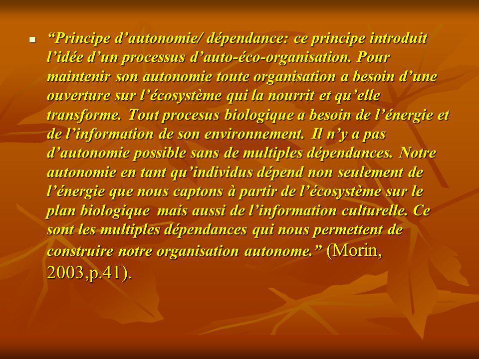 Principe d'autonomie/ dépendance: ce principe introduit l'idée d'un processus d'auto-éco-organisation.