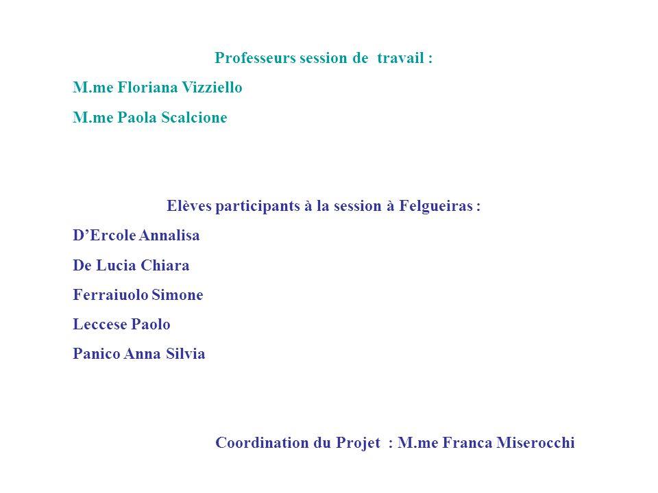 Professeurs session de travail : M.me Floriana Vizziello